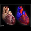 06 33 18 320 heart vroff 4