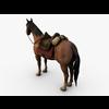 06 33 57 518 002 horseok1ren 4