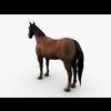06 33 58 289 008 horseok1ren 4