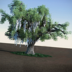 Oak with Moss LowPoly tree 3D Model