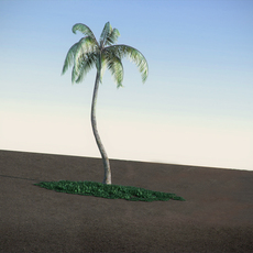 General Palm LowPoly 3D Model