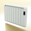 06 58 23 231 radiator 5 preview 01 4