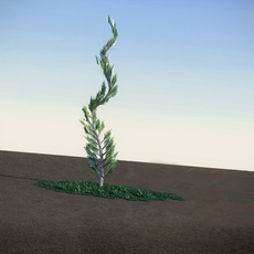 Juniper Topiary flat LowPoly 3D Model