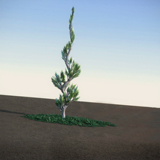 Juniper Topiary LowPoly 3D Model