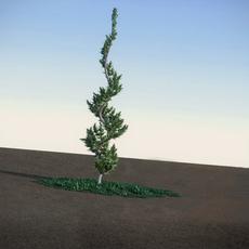 Juniper Topiary HiPoly 3D Model