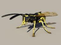 Wasp 3D Model