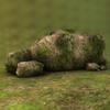 07 10 26 521 003z sren rocks4 4