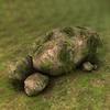 07 10 26 754 004z sren rocks4 4