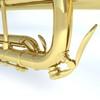07 10 58 798 trumpet3b 4