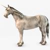 07 17 26 554 000 sren null unicorn 4