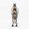 07 17 26 976 004 sren null unicorn 4