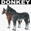 07 17 27 668 001 donkey copia 4