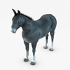 07 17 28 788 004 donkey 4