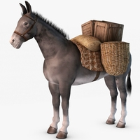 Loaded Pack Mule 3D Model