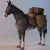07 17 29 295 001 sren null donkeypacket 4