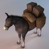 07 17 29 426 002 sren null donkeypacket 4