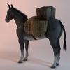 07 17 29 505 003 sren null donkeypacket 4