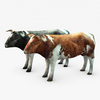 07 21 16 60 002 sren cow 4