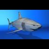 07 26 11 826 shark rw 4
