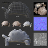 07 27 20 754 mark florquin turtle 3d wireframe normal map displacement low poly quads 4