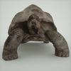 07 27 21 286 mark florquin turtle render front 4