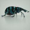 07 30 14 380 mark florquin blue beatle render 3d model right 4