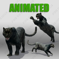 Panther Animated 3D Model