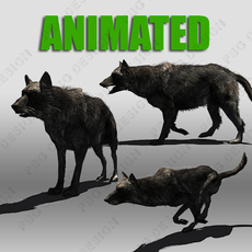 Black Wolf Animated 3D Model