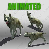 Timber Wolf Animated 3D Model