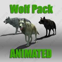 Wolf Pack 3D Model