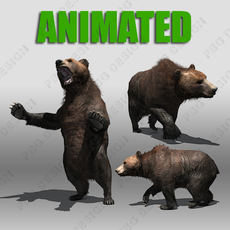 Grizzly Bear Animated 3D Model
