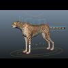 07 34 49 704 cheetah 4
