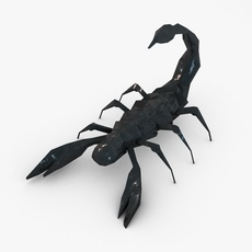 Low poly scorpion 3D Model