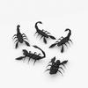 07 39 18 11 001z sren null scorpion 4