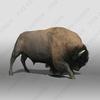 07 40 49 222 bison4 4