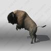 07 40 49 292 bison5 4