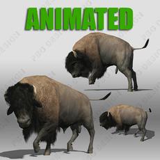 Buffalo 3D Model