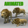 Lion Animated 3D Model