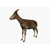07 46 58 568 003 goat 4