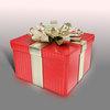 07 49 45 231 gift box 4