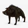 07 50 14 140 003 sren null boar 4