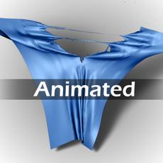 Torn Cloth 3D Model