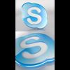 07 51 43 457 skype logo 01  590  4