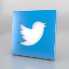 Twitter Icon Logo 3D Model