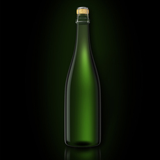 Bottle of Champagne 3D Model