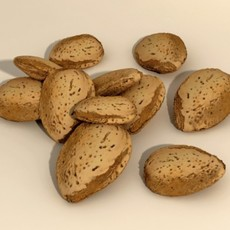 Almonds in Shell 3D Model