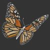 07 55 18 826 butterfly monarch 3d model scan photoreal insect mark florquin 2 4