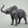 07 56 49 735 mark florquin baby elephant 3d model mammal grey 1  4