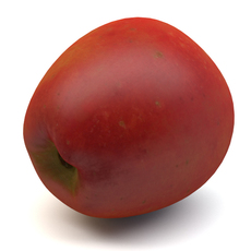 New Apple 3D Model