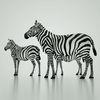 07 57 18 137 mark florquin zebra africa 3d model 1 4